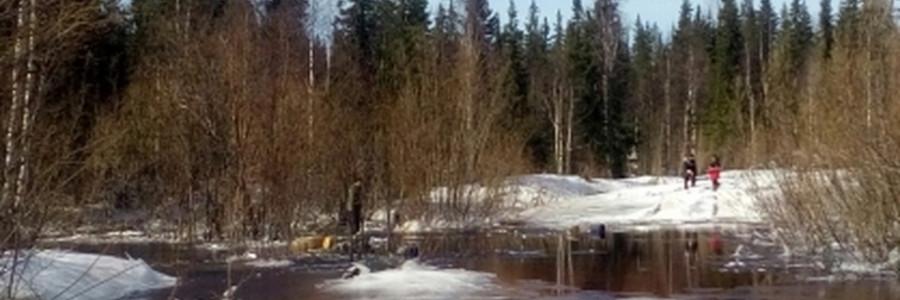 Место гибели пассажиров транспортера. Фото: Следком по Коми